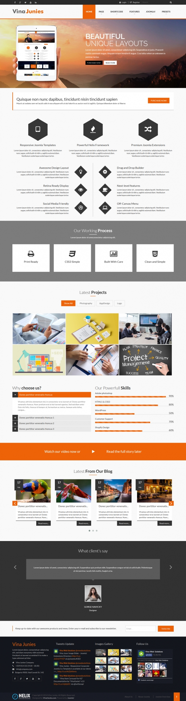 Vina Junies - Responsive Corporate Joomla 3.x Template